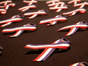 22336_MemorialVeteran's_Day_Ribbons